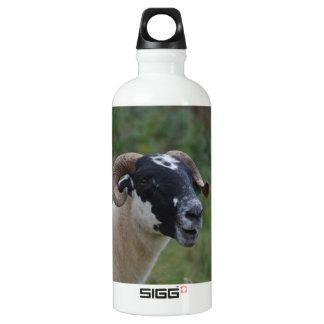 Cute Sheep SIGG Traveler 0.6L Water Bottle