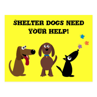 Cute Shelter Dogs Need Your Help Charity Postcard