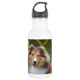 Cute Sheltie 18oz Water Bottle
