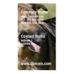 Cute Shepherd Double-Sided Standard Business Cards (Pack Of 100)