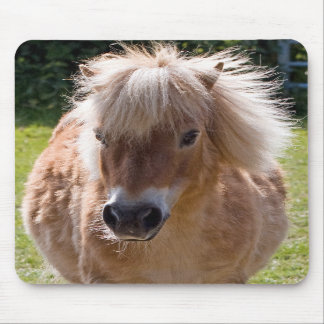 Cute Shetland pony head close-up mousepad gift