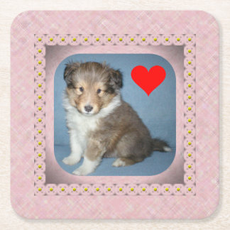 Cute Shetland Sheepdog Puppy Dog Coasters Set of 6