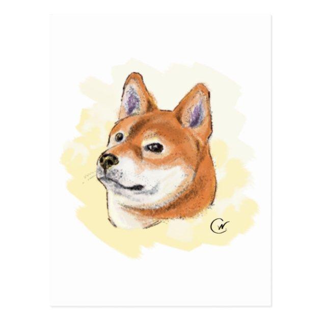 Cute Shiba Inu Dog Drawing Postcard Zazzle Com