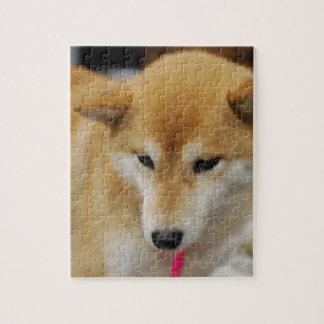 Cute Shiba Inu Jigsaw Puzzle