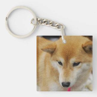 Cute Shiba Inu Single-Sided Square Acrylic Keychain