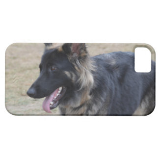 Cute Shiloh Shepherd iPhone SE/5/5s Case