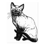 Cute Siamese Cat Postcards