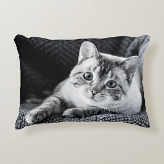 Cute Siamese Kitty Cat Accent Pillow