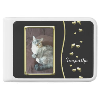 Cute Siamese Tabby Cat Gold Hearts Power Bank