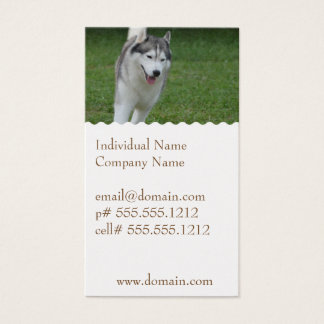Cute Siberian Husky Business Card