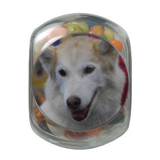 Cute Siberian Husky Glass Jars