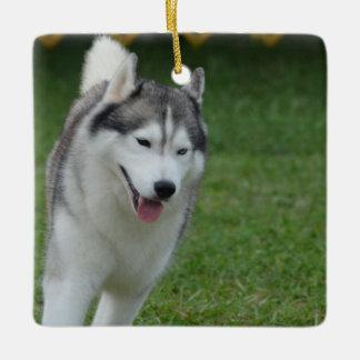 Cute Siberian Husky Ceramic Ornament