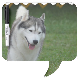 Cute Siberian Husky Dry Erase Board