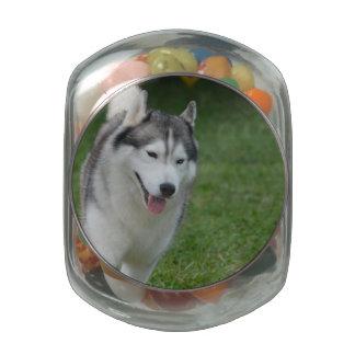 Cute Siberian Husky Glass Candy Jars