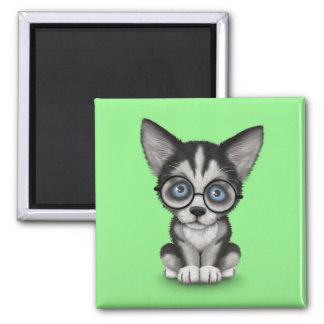 Cute Siberian Husky Puppy Wearing Glasses Green Magnet