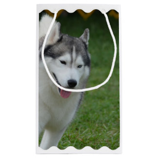 Cute Siberian Husky Small Gift Bag
