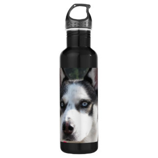 Cute Siberian Husky Water Bottle