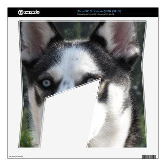 Cute Siberian Husky Xbox 360 S Console Skin