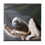 Cute Sifaka Lemur Tiles