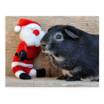 Cute Silver Fox Guinea Pig and Santa Postcard