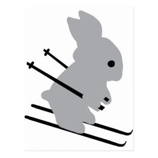 cute ski bunny  snow skiing postcard