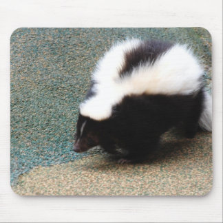 Cute Skunk Mouse Pad