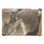 Cute Sleeing Rabbit Cover For The iPad Mini