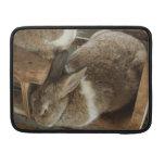 Cute Sleeing Rabbit Sleeve For MacBooks