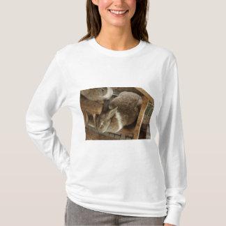 Cute Sleeing Rabbit T-Shirt