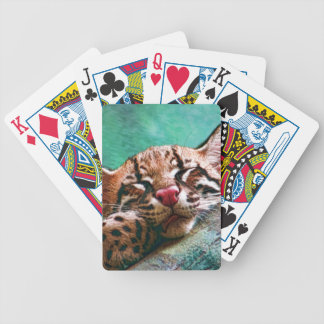 Cute Sleeping Baby Ocelot Kitten Bicycle Playing Cards