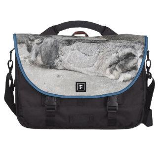 cute sleeping bunny bag laptop messenger bag