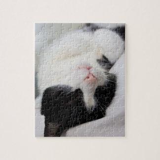 Cute sleeping cat tomcat face sweet jigsaw puzzle