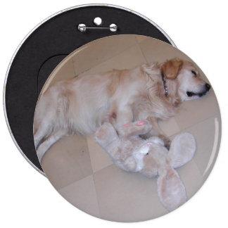 Cute Sleeping Golden Retriever  With Toy Rabbit Button
