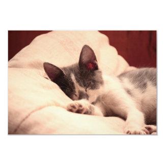 Cute Sleeping Kitten Card
