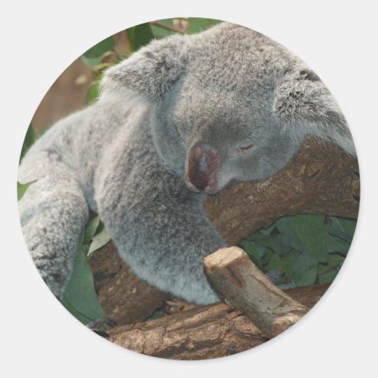 Cute Sleeping Koala Bear Classic Round Sticker