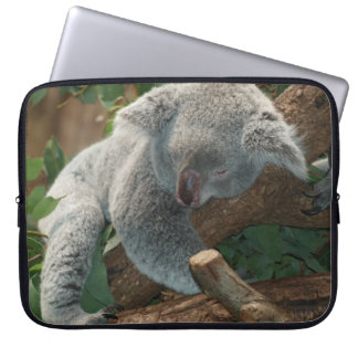 Cute Sleeping Koala Bear Laptop Sleeves