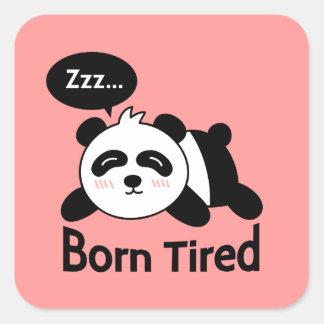 Cute Sleeping Panda, Born Tired Square Stickers