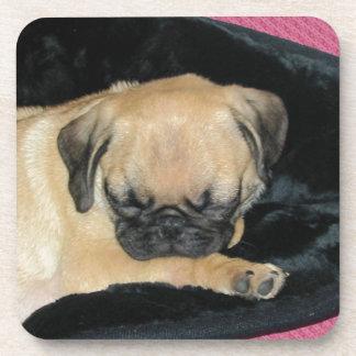 Cute Sleeping Pug Puppy Drink Coaster