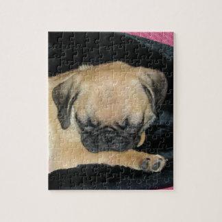 Cute Sleeping Pug Puppy Jigsaw Puzzle