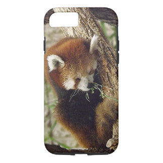 Cute Sleeping Red Panda w/ Food in Its Mouth iPhone 7 Case