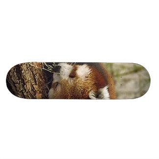 Cute Sleeping Red Panda w/ Food in Its Mouth Skateboard