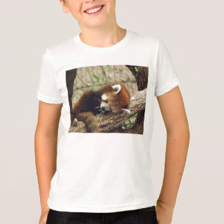 Cute Sleeping Red Panda w/ Food in It's Mouth T-Shirt