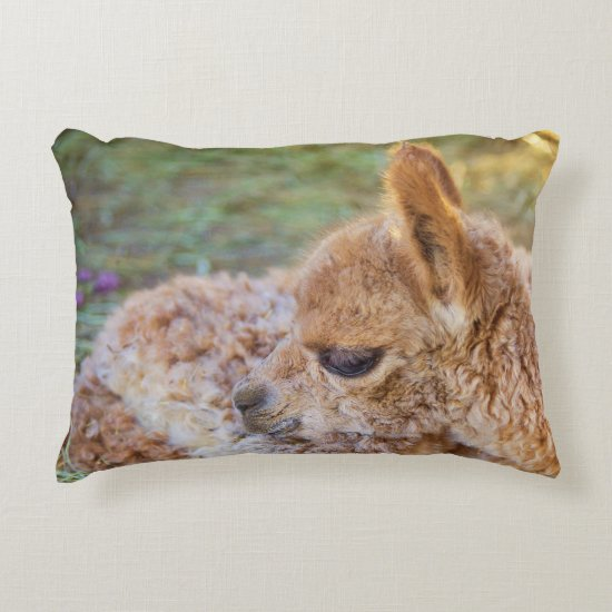 Cute Sleepy Alpaca Accent Pillow