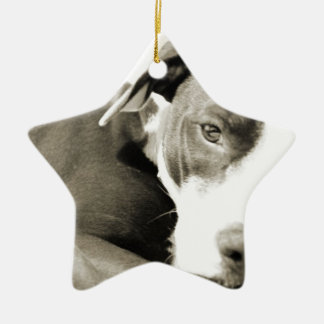 cute sleepy lazy pit bull dog ceramic ornament
