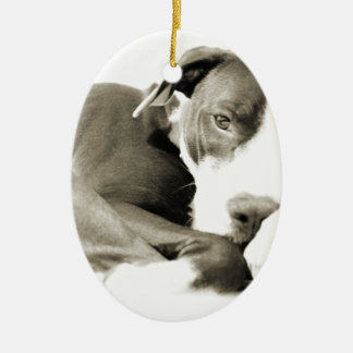 cute sleepy lazy pit bull dog ceramic ornament