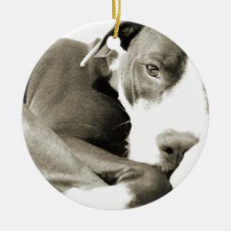 cute sleepy lazy pit bull dog christmas tree ornament