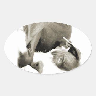 cute sleepy lazy pit bull dog oval sticker