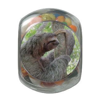 Cute Sloth Glass Candy Jars