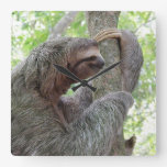 Cute Sloth Clocks