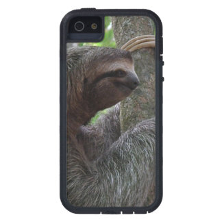 Cute Sloth Cover For iPhone 5